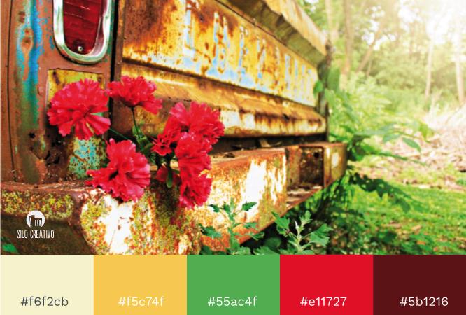gama-colores-con-imagen