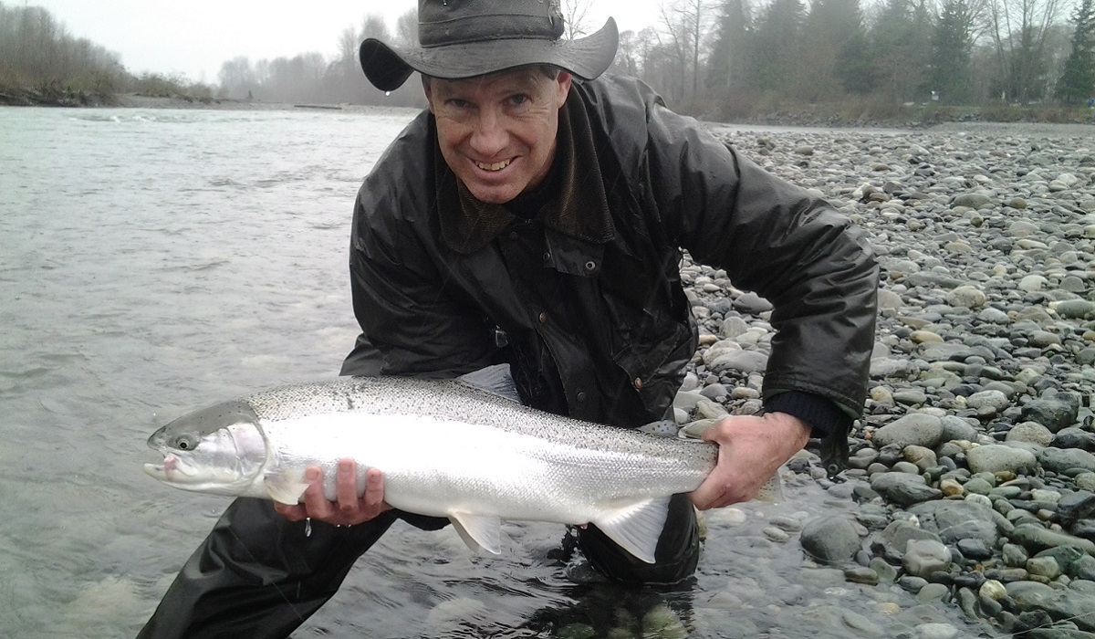 steelhead, vedder steelhead, bc steelhead, chilliwack steelhead, steelhead fishing, steelhead fishing bc, steelhead fishing guide, vedder river steelhead fishing, vancouver bc steelhead fishing