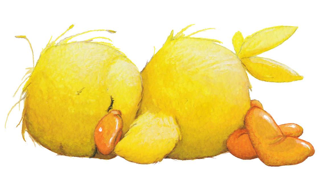 Cute Duck Hd Wallpaper My Little House Silvita Blanco Patos Patitos Cute Im 225 Genes
