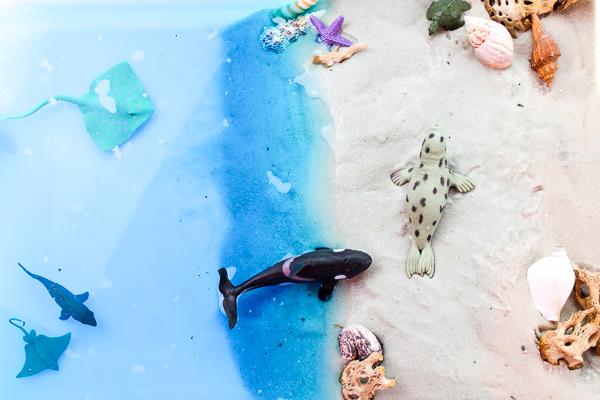 Educational Ocean Theme Preschool Sensory Bin