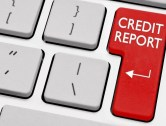 FICO Credit Report for $1
