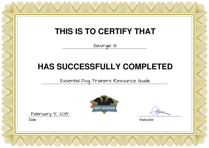 certificate_8_