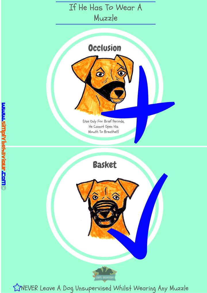 dog muzzle awareness