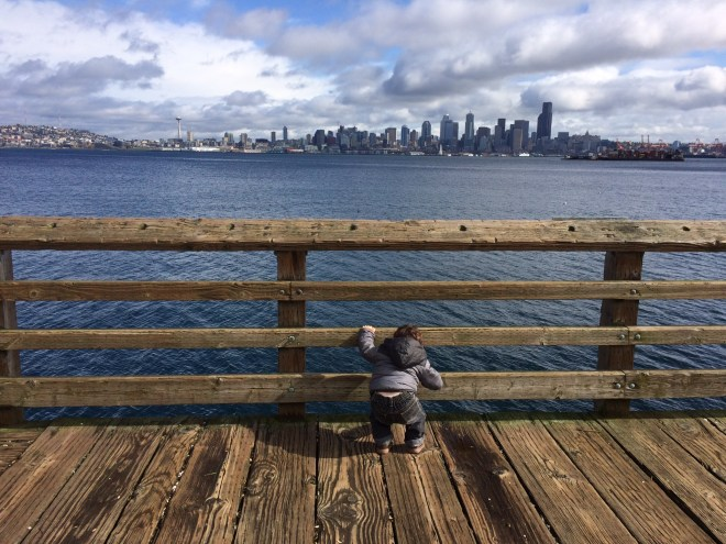 Taking in the views from West Seattle