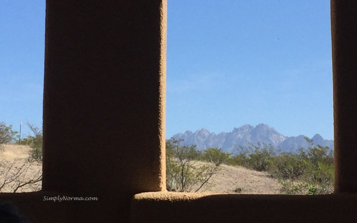 View of Organ Mountains