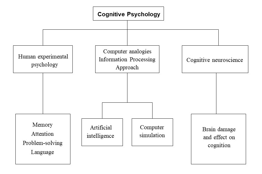 Cognitive Approach Simply Psychology