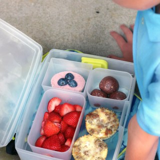 5 MORE Healthy Whole Food Lunch Ideas + Bentology Giveaway