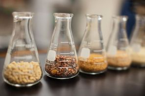 De qué hablamos cuando hablamos de perfumería: 10 conceptos básicos