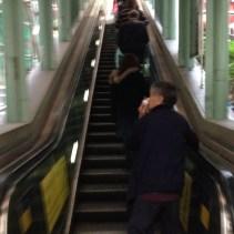 Mid Level elevators