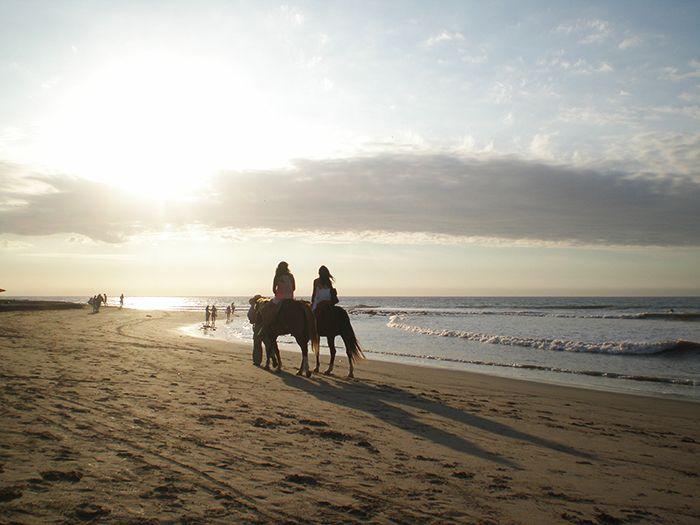 Caballos al atardecer en Máncora Perú