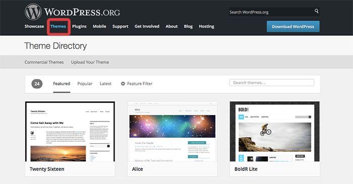 wordpress1web