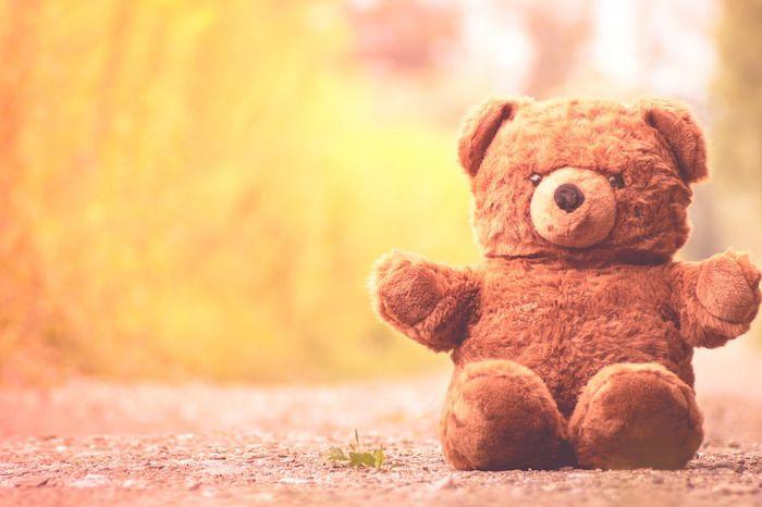 teddy-bear-osito-viajas-viajar-razones