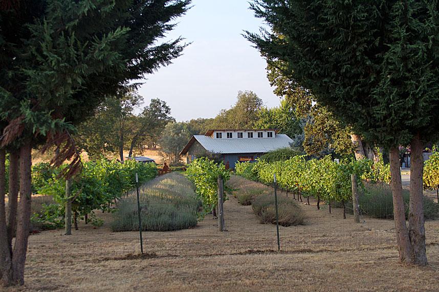 Fiasco Winery Jacksonville, Oregon
