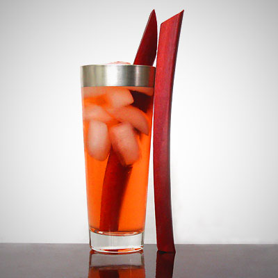 Rhubarb Gin and Tonic Cocktail