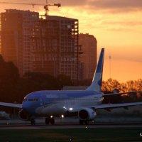 Quick spotting en Aeroparque