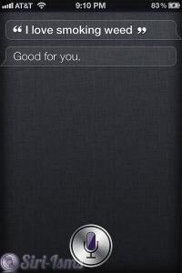 I Love Smoking Weed- Siri Gets Stoned