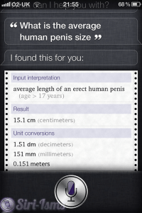 What Is The Average Human Penis Size?~ Funny Siri Sayings