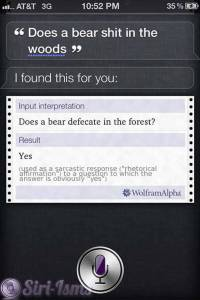 Does A Bear Shit In The Woods? - Siri Answers!