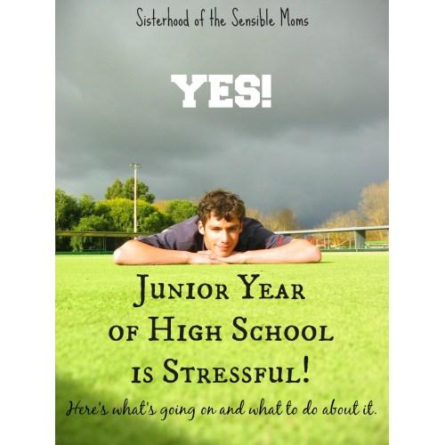 Medium Crop Of High School Musical Quotes