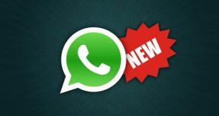Whatsapp permitirá compartir música y crear grupos públicos