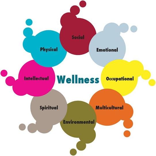 Holistic Health Components Of Holistic Health