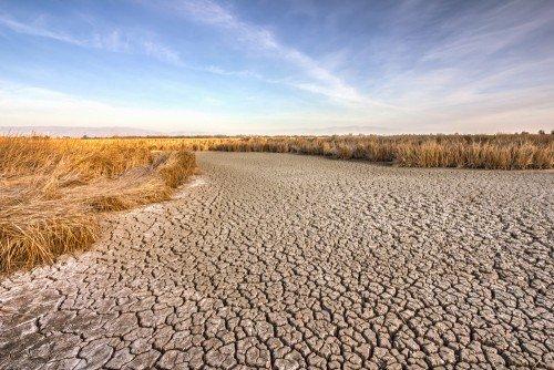 california-drought-dried-mud