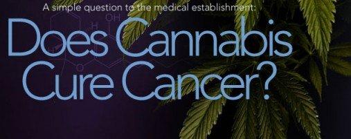 does-cannabis-cancer