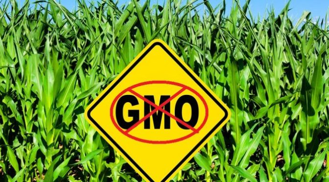 Retracted PLoS article fallout – GMO scientist Kevin Folta