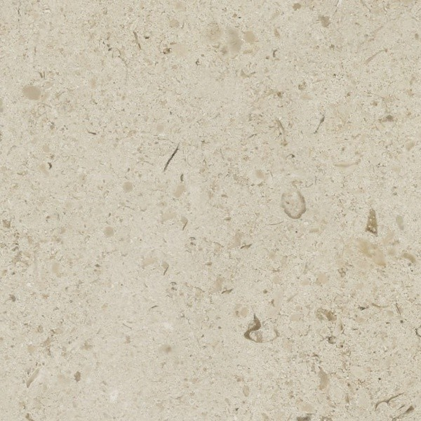 Black And Blue Floral Wallpaper Limestone Wall Surface Texture Seamless 08596