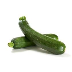 Small Crop Of Cucumber Vs Zucchini