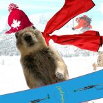 The Banff Squirrel's Answers | Oct. 21