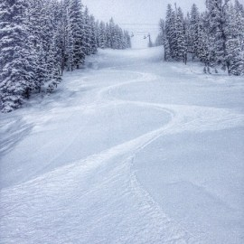 Powder day at Jackson Hole
