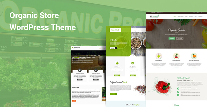 Organic Store WordPress Themes for natural fresh healthy food stores