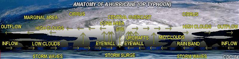mrbuckleyslrtwiki / 7-8 A Hurricane Danny Task 4 Hurricane Diagram