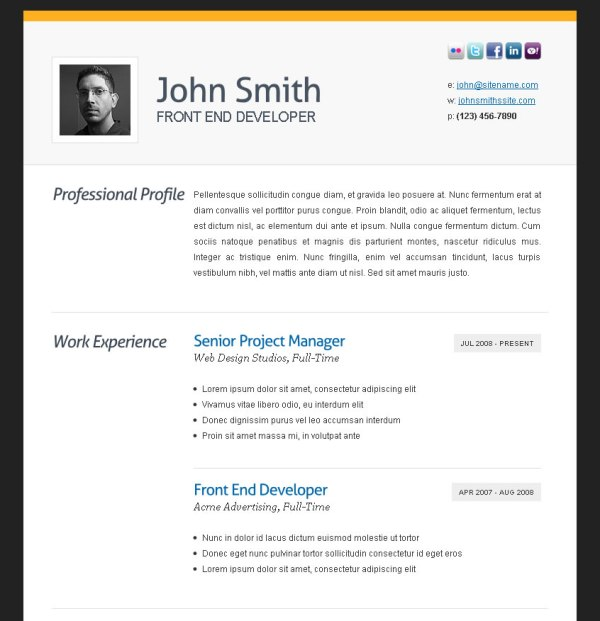 Cv Professional Template Free Rewriting Services For