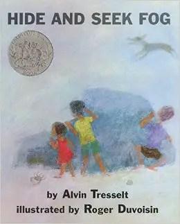 Hide and Seek Fog cover