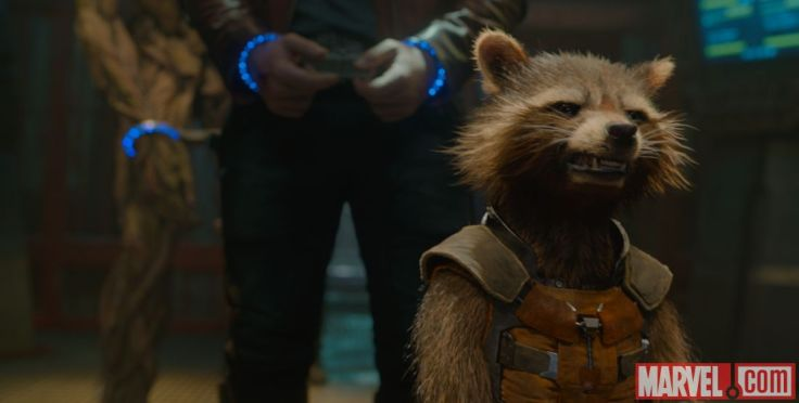 Guardians of the Galaxy Rocket Watermark