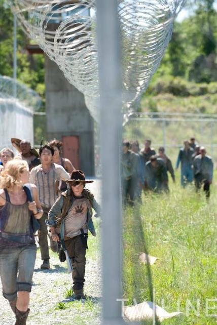 The Walking Dead - Carl and group