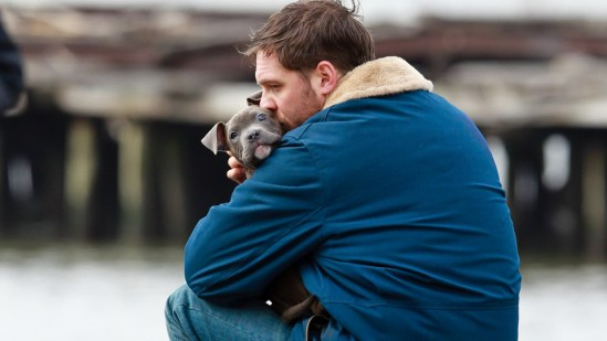 Tom Hardy on Animal Rescue set