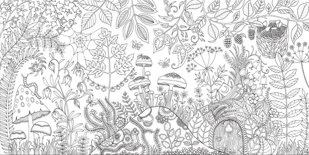 Johanna Basford Enchanted Forest, Secret Garden Addictive coloring