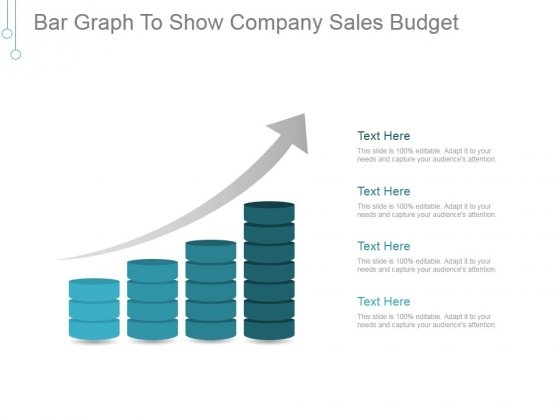 Bar Graph To Show Company Sales Budget Ppt PowerPoint Presentation