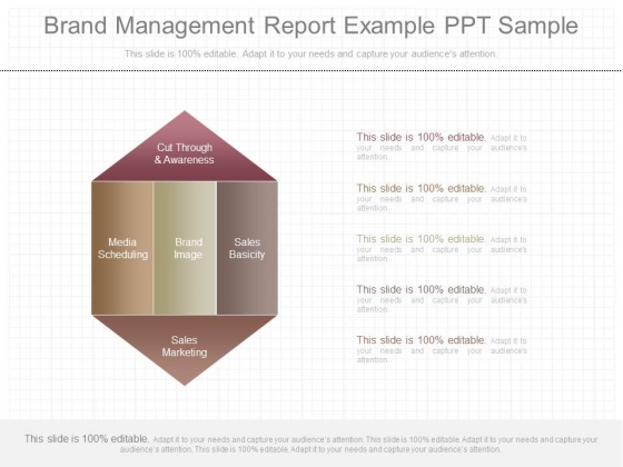 Brand Management Report Example Ppt Sample - PowerPoint Templates