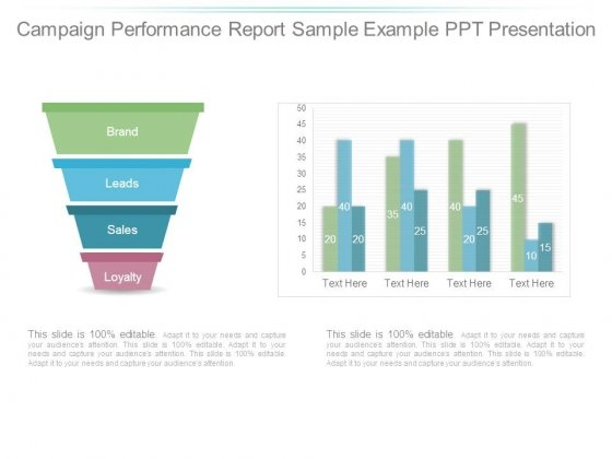 Campaign Performance Report Sample Example Ppt Presentation