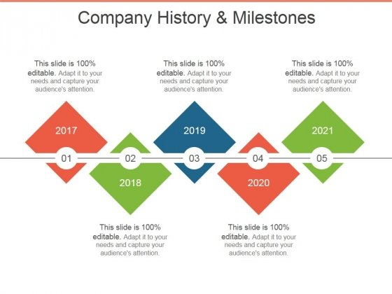 Company History And Milestones Template 1 Ppt PowerPoint
