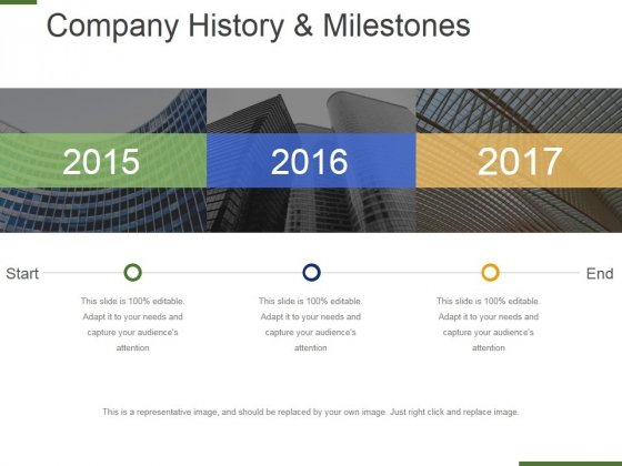 Company History And Milestones Template 2 Ppt PowerPoint
