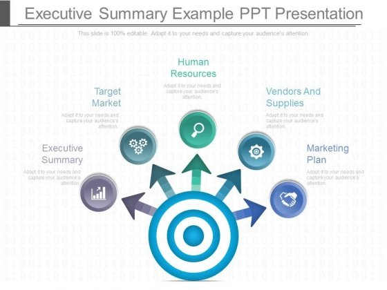 Executive Summary Example Ppt Presentation - PowerPoint Templates