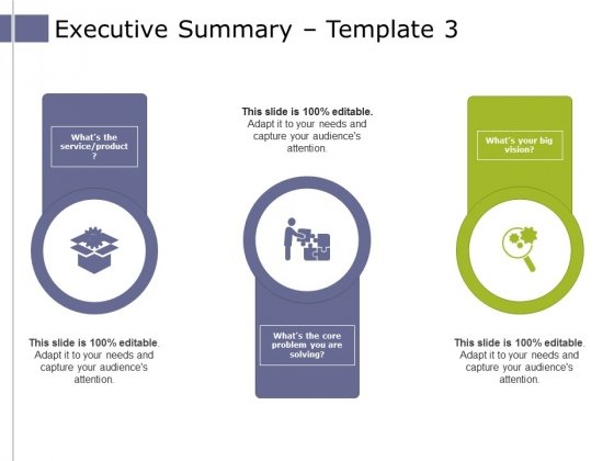 Executive Summary Template 3 Ppt PowerPoint Presentation Model