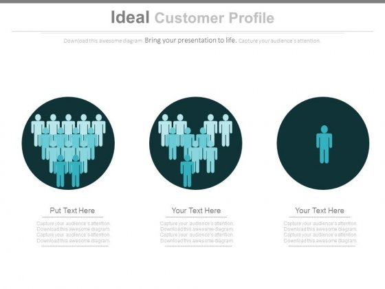 Ideal Customer Profile Ppt Slides - PowerPoint Templates - customer profile