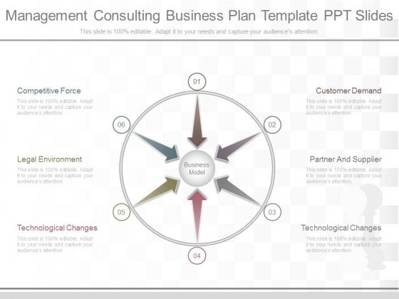 Management Consulting Business Plan Template Ppt Slides - PowerPoint