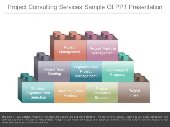 Project Consulting Services Sample Of Ppt Presentation - PowerPoint